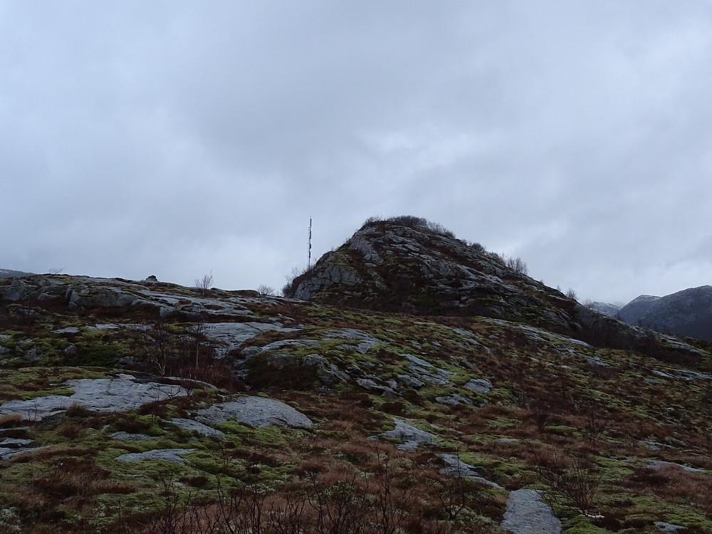 Toppen av Forøya sett fra vest mot øst