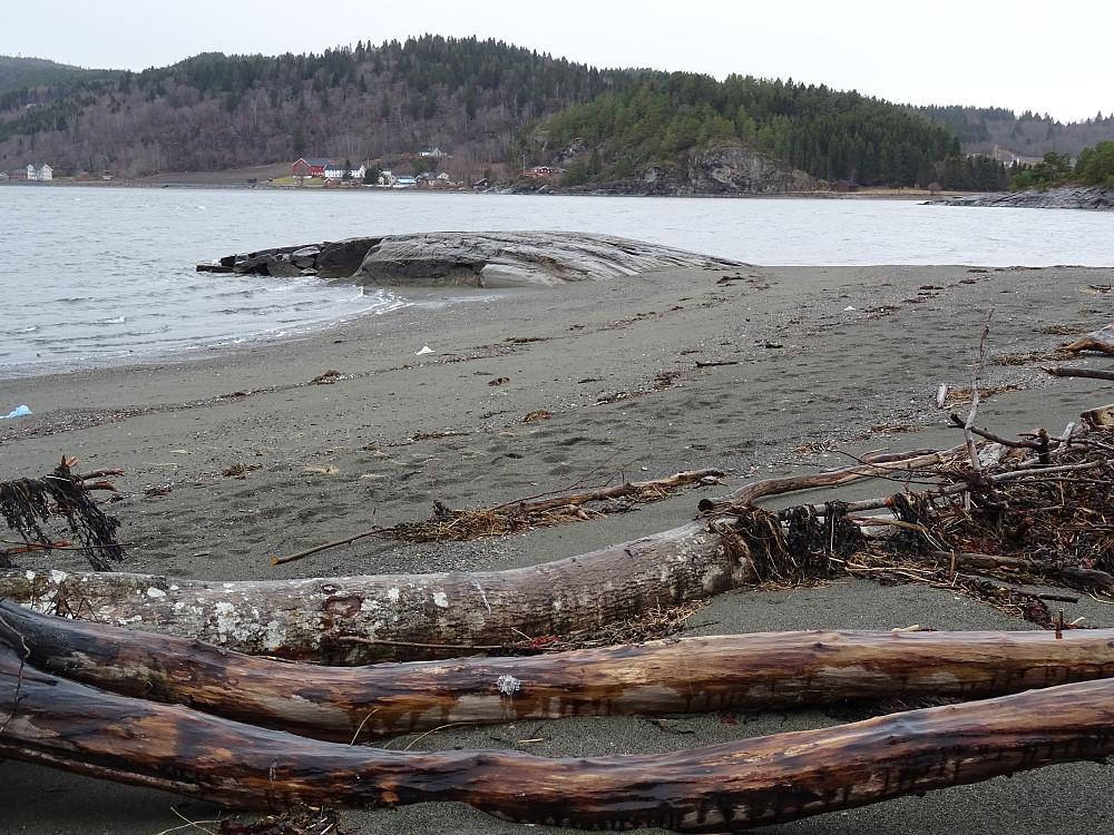 Her er det mye rakkaved. På denne stranda kan du sikre deg vinterforsyningen med ved.
