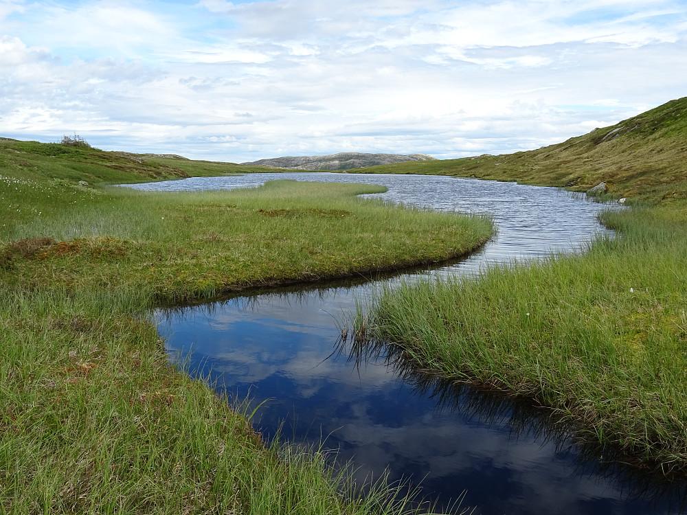 Et lite vann øst for Finnvollheia