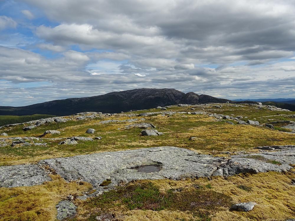 Toppen av Øystre Bjørfarvassheia mot Øyensskavlen