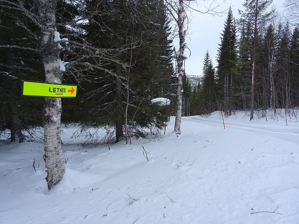 Skilt der skogsbilveien starter. (Vinterbrøytet)