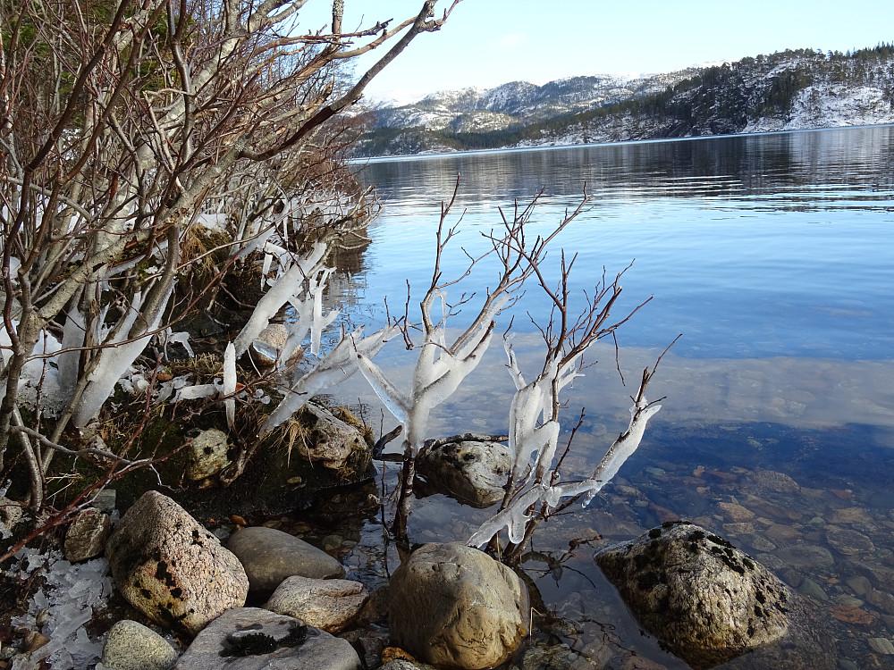 Siste rest av vinter på det isfrie Salvatnet