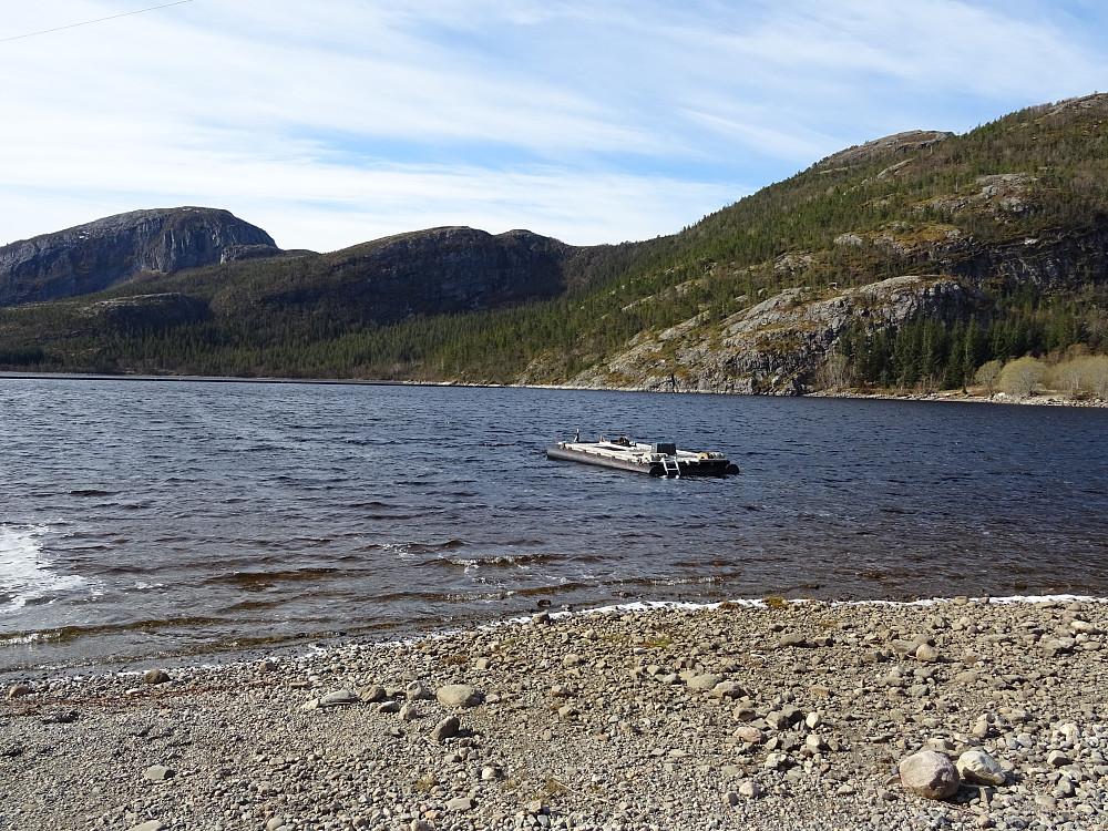 En badeflåte i utløpet av Lauvsnesvatnet