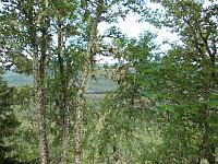 Utsikt fra Klefsåsen